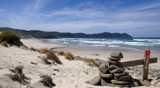 South Coast Track Tasmania by ro_and, photography->shorelines gallery