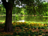 Lakeside at Earthday 2006 by jojomercury, photography->gardens gallery