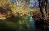 Broken Log Bridge by casechaser, photography->manipulation gallery