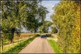 Rural Village 2 by corngrowth, photography->landscape gallery