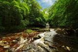 Cauldron Falls by biffobear, photography->waterfalls gallery