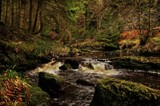 The Hindhope beck by biffobear, photography->landscape gallery
